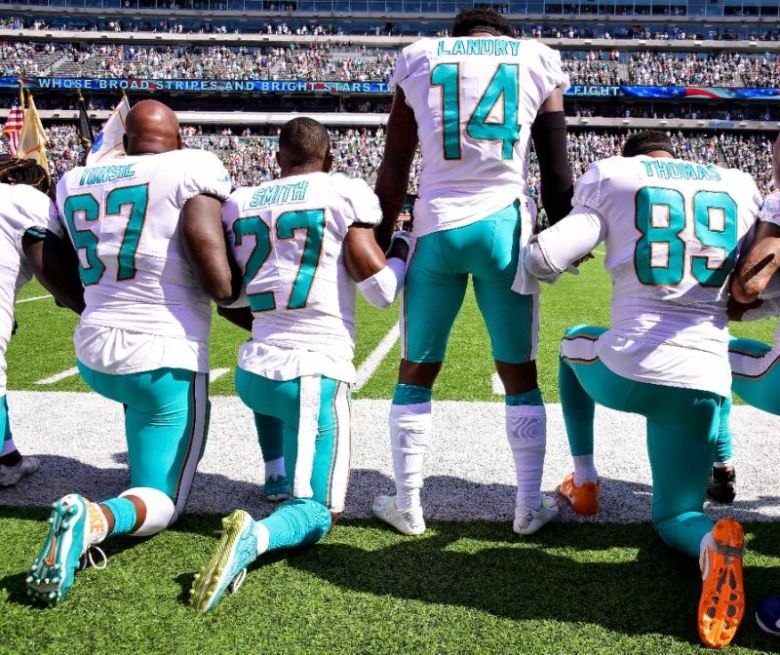 dolphins protest